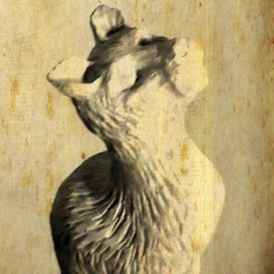 Palica - mačka